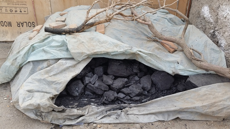 Found a lot of coal everywhere. For burning in ovens for cooking and heat in the winter.